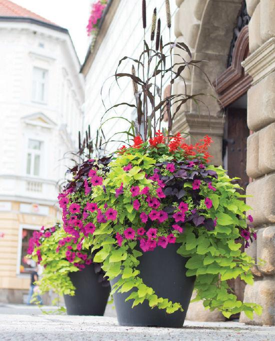 Květinová výzdoba, květníky